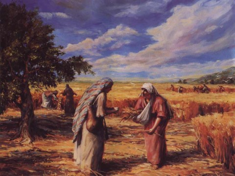 1_6-1_ruth_ruth_and_naomi_gleaning_in_the_fields